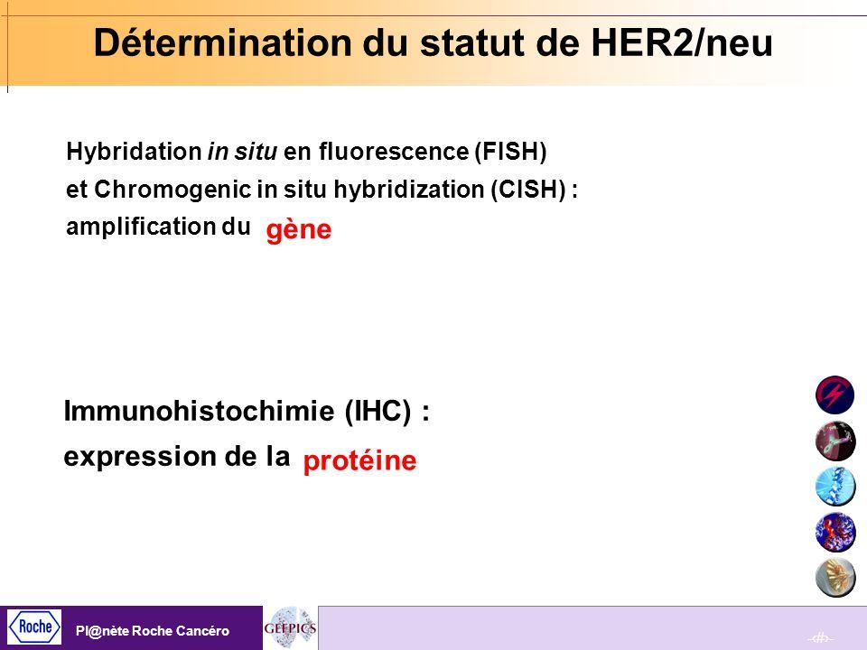 Détermination du statut de HER2/neu