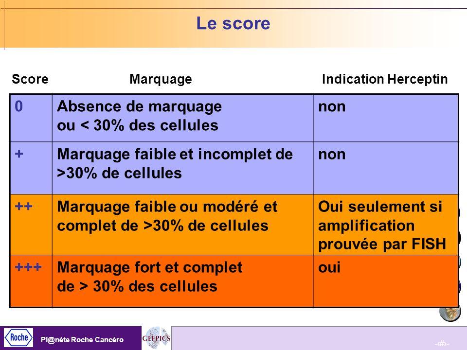 Le score Absence de marquage ou < 30% des cellules non +