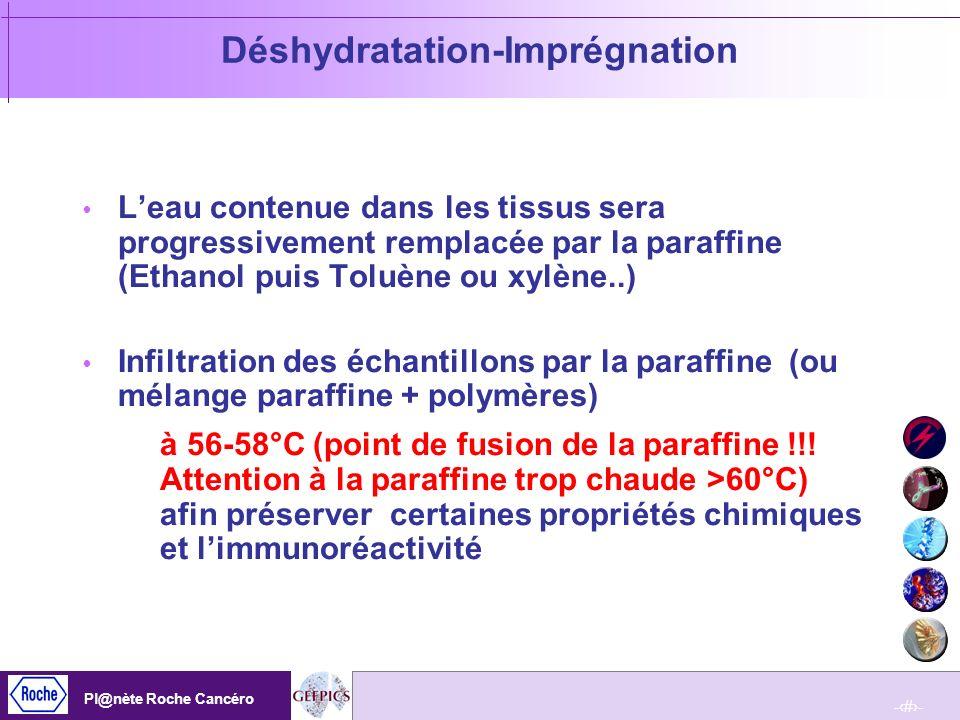 Déshydratation-Imprégnation