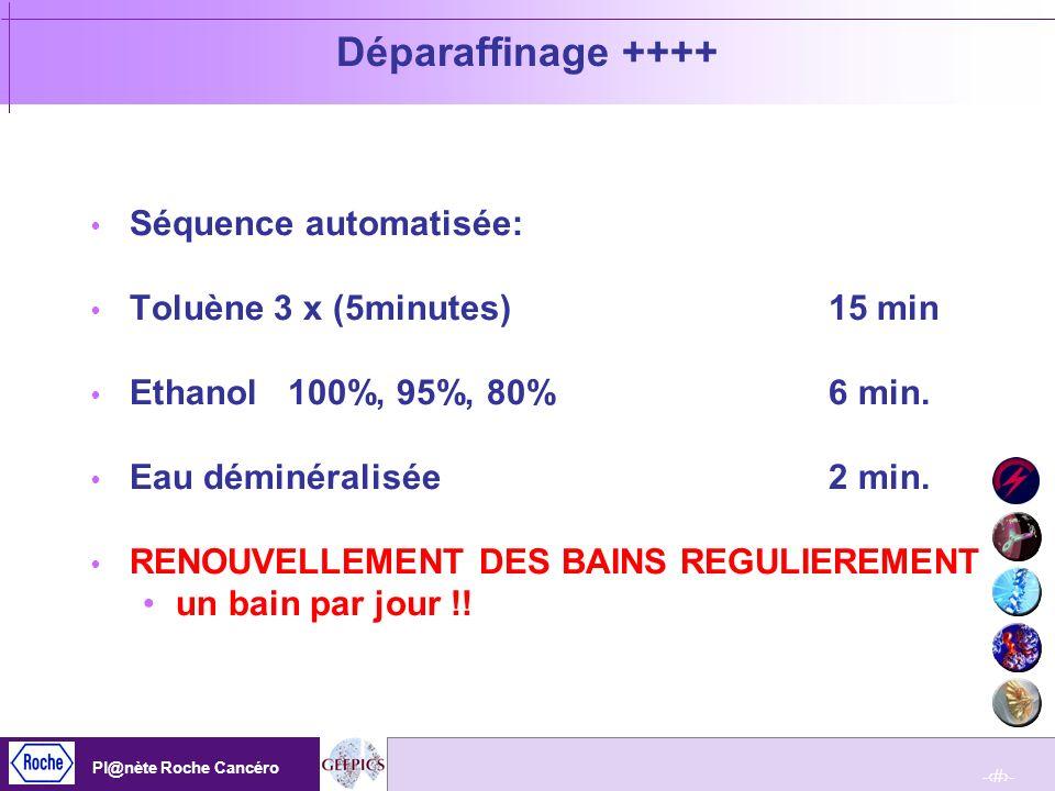 Déparaffinage ++++ Séquence automatisée: Toluène 3 x (5minutes) 15 min
