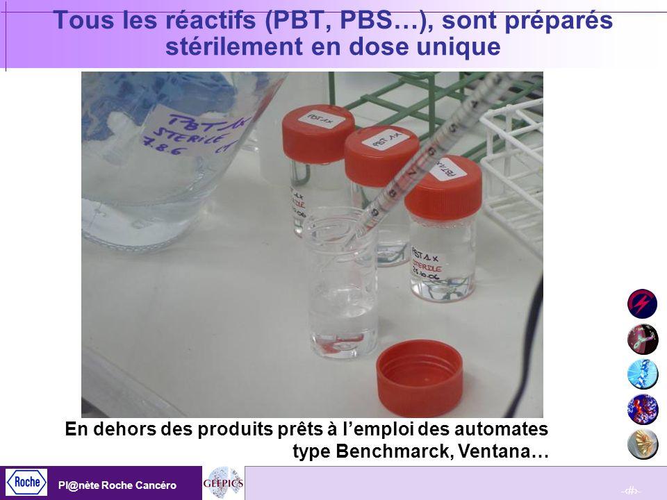 Tous les réactifs (PBT, PBS…), sont préparés stérilement en dose unique