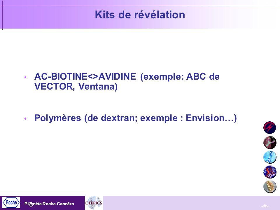 Kits de révélationAC-BIOTINE<>AVIDINE (exemple: ABC de VECTOR, Ventana) Polymères (de dextran; exemple : Envision…)