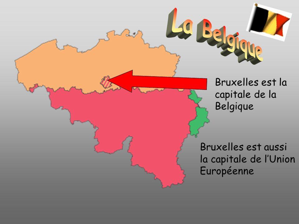 La Belgique Bruxelles est la capitale de la Belgique