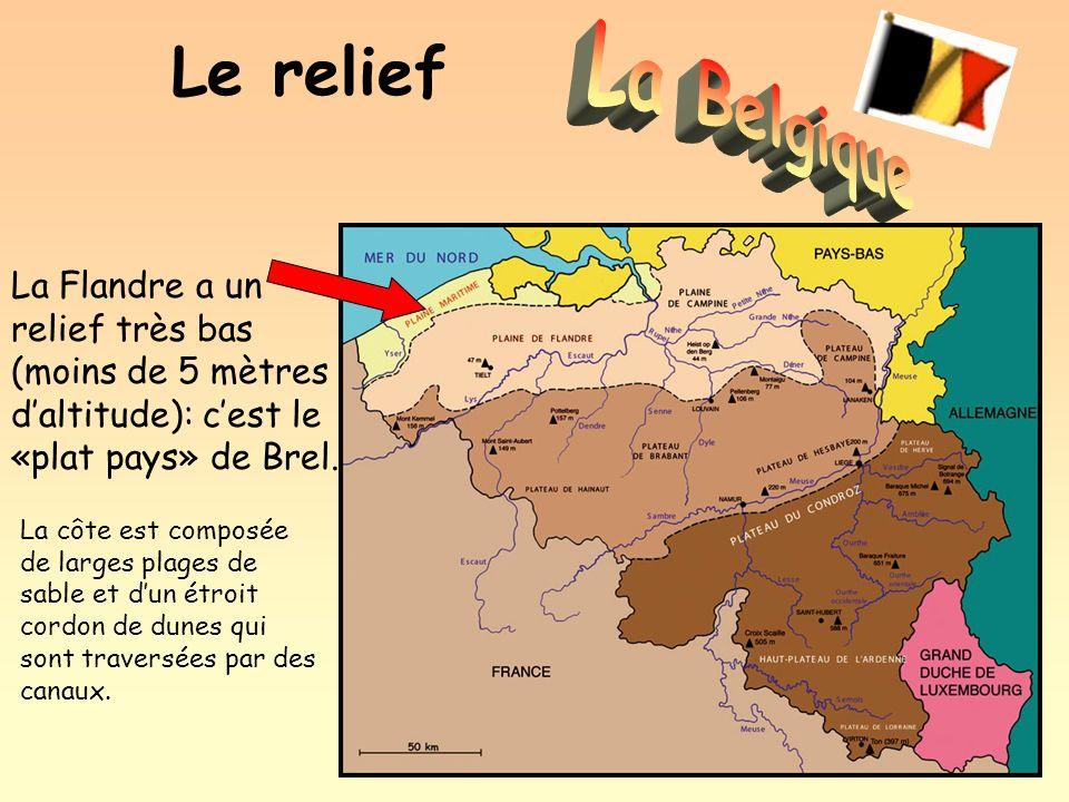 Le relief La Belgique. La Flandre a un relief très bas (moins de 5 mètres d'altitude): c'est le «plat pays» de Brel.