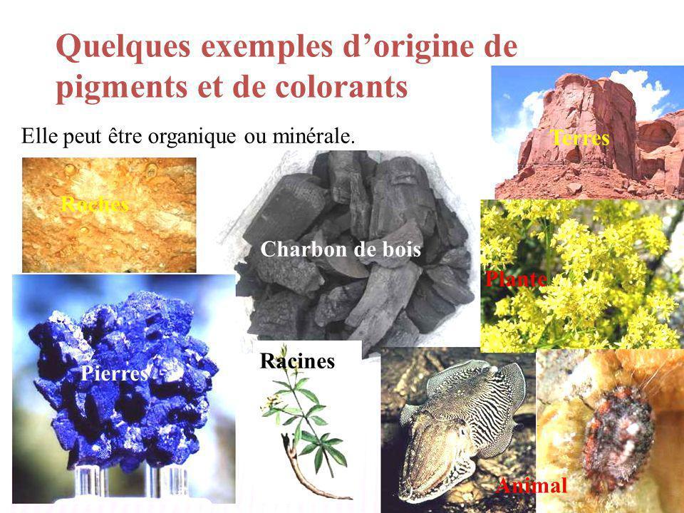 Quelques exemples d'origine de pigments et de colorants