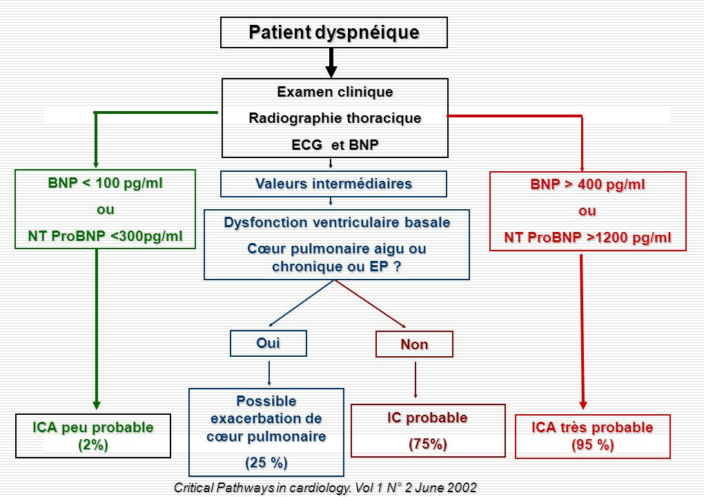 Patient dyspnéique Examen clinique Radiographie thoracique ECG et BNP