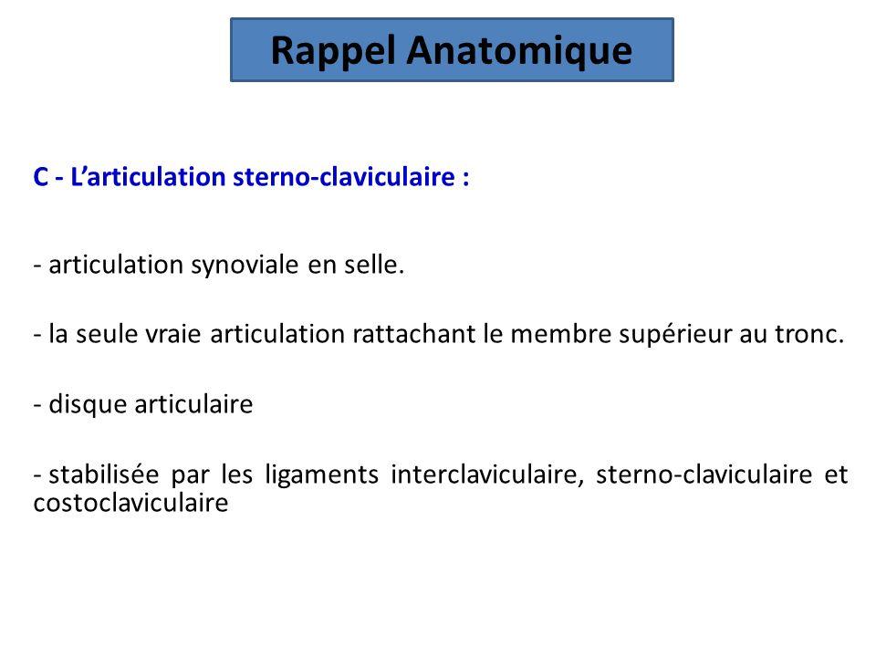 Rappel Anatomique C - L'articulation sterno-claviculaire :