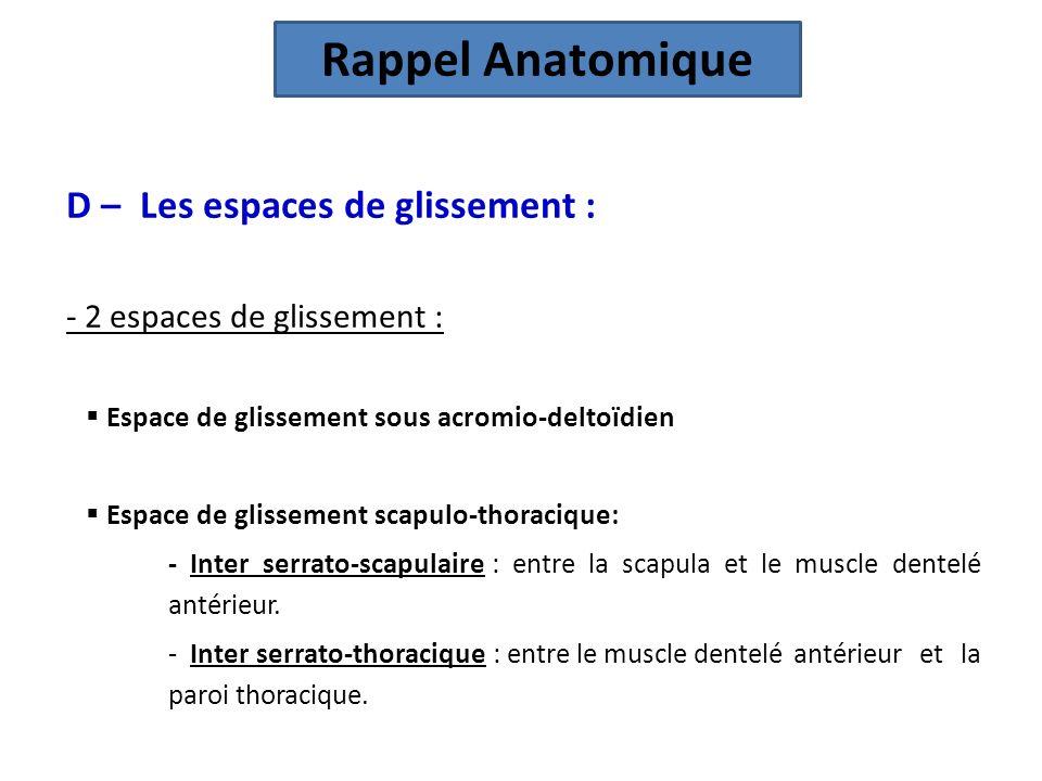 Rappel Anatomique D – Les espaces de glissement :