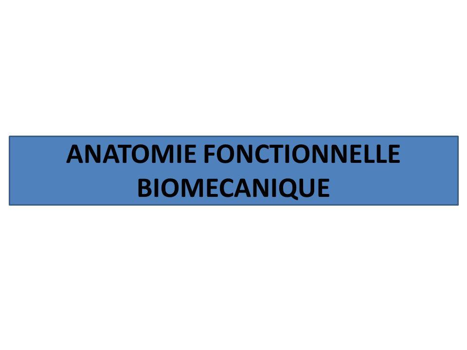 ANATOMIE FONCTIONNELLE BIOMECANIQUE