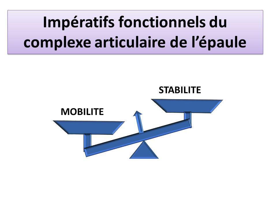 Impératifs fonctionnels du complexe articulaire de l'épaule
