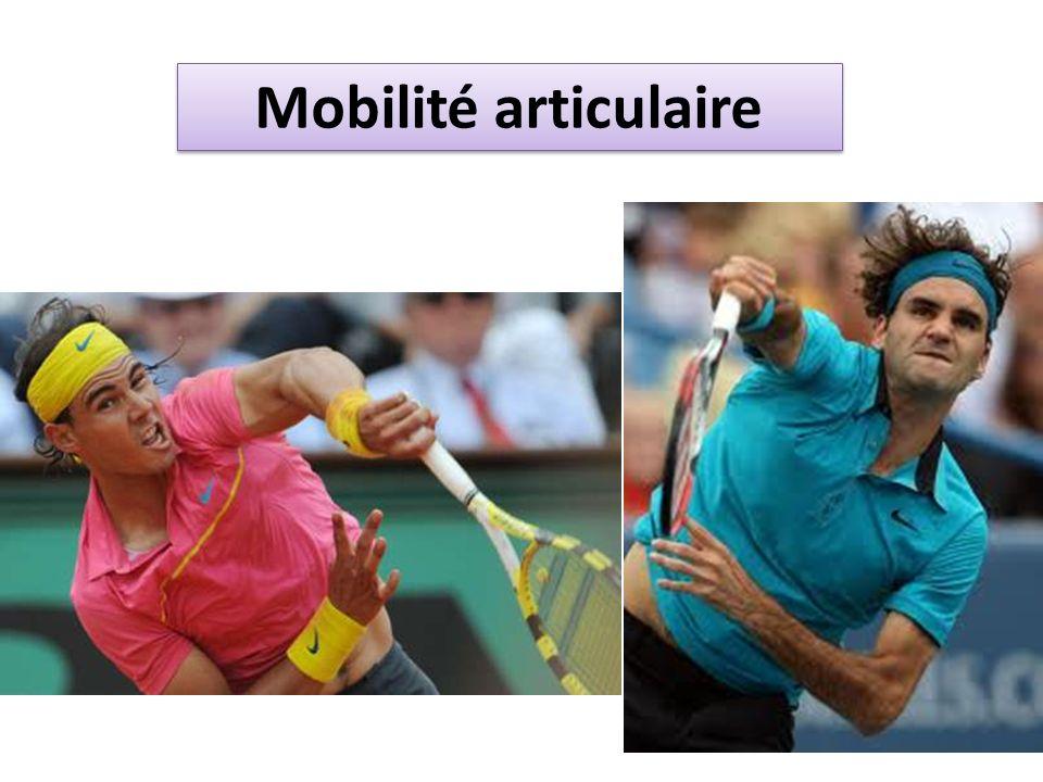 Mobilité articulaire