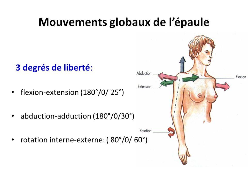 Mouvements globaux de l'épaule