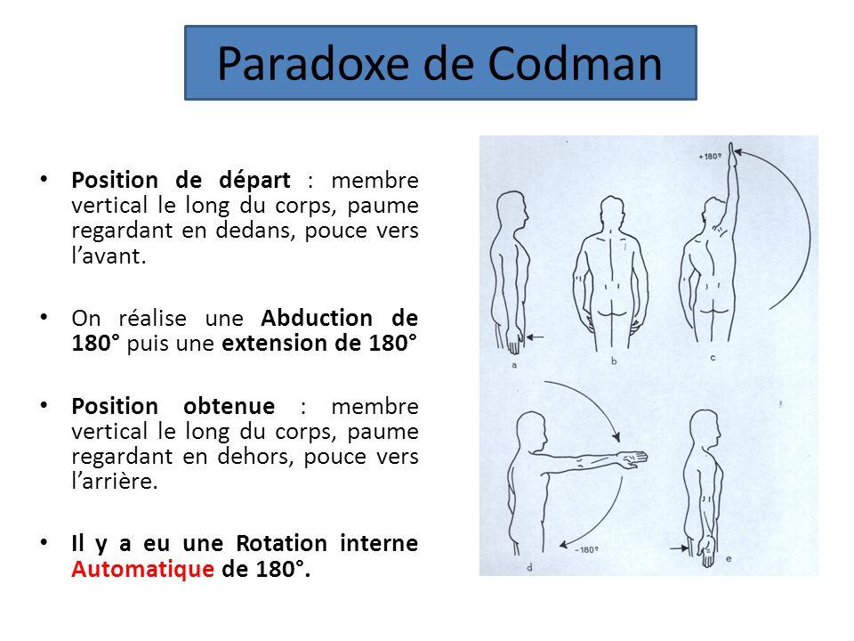 Paradoxe de Codman Position de départ : membre vertical le long du corps, paume regardant en dedans, pouce vers l'avant.