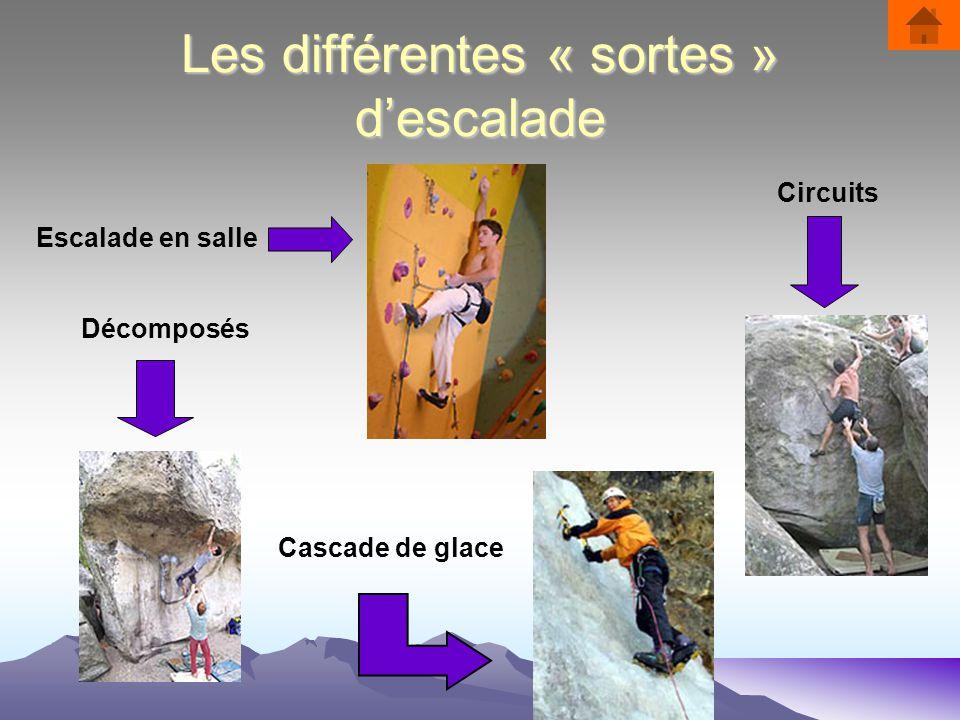 Les différentes « sortes » d'escalade