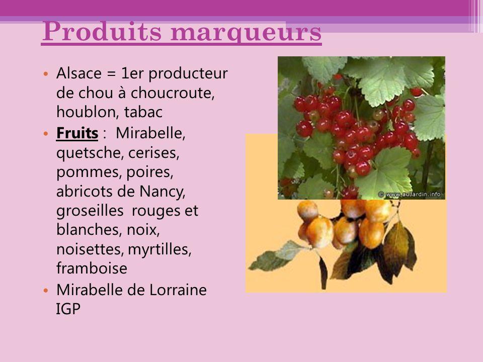 Produits marqueurs Alsace = 1er producteur de chou à choucroute, houblon, tabac.