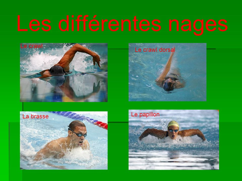Les différentes nages Le crawl Le crawl dorsal Le papillon La brasse