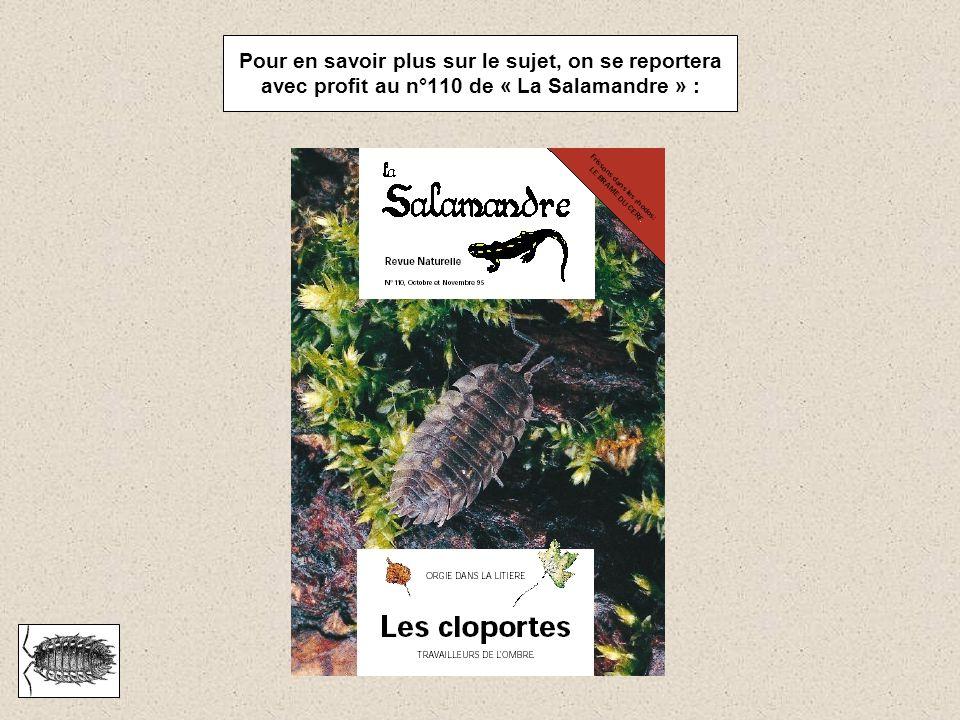 Pour en savoir plus sur le sujet, on se reportera avec profit au n°110 de « La Salamandre » :