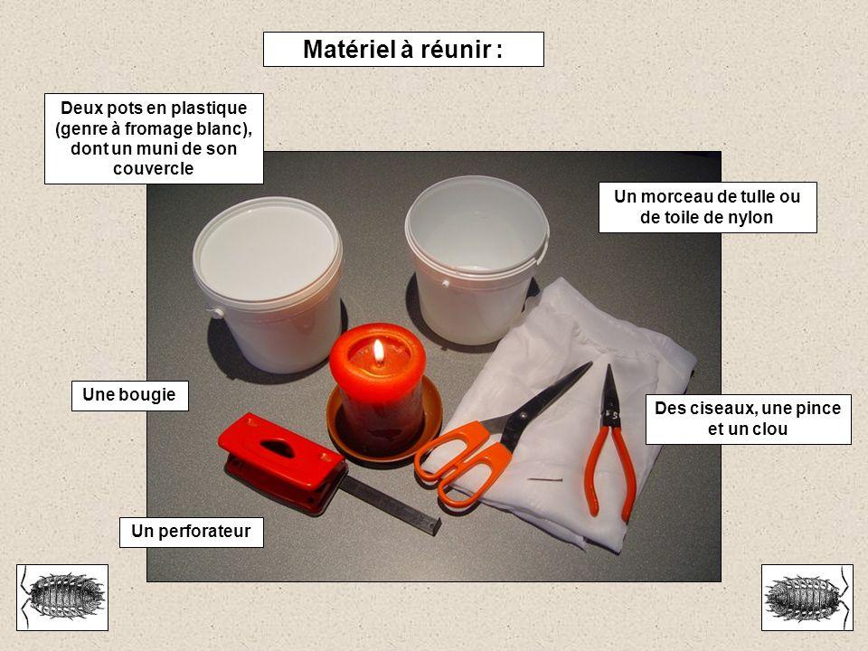 Matériel à réunir : Deux pots en plastique (genre à fromage blanc), dont un muni de son couvercle. Un morceau de tulle ou de toile de nylon.