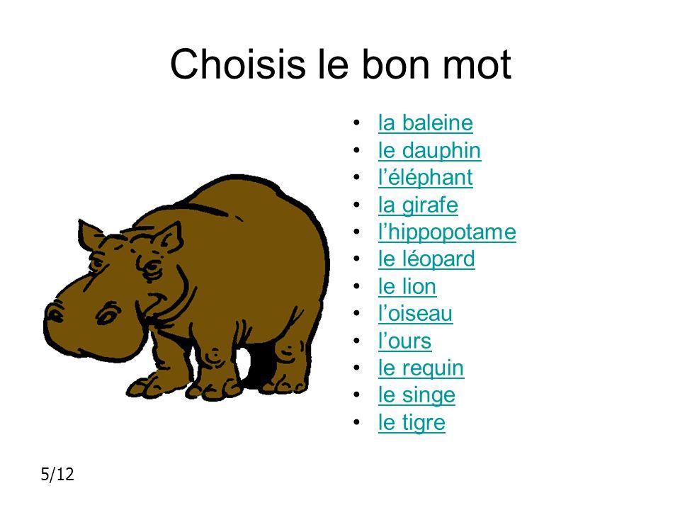 Choisis le bon mot la baleine le dauphin l'éléphant la girafe