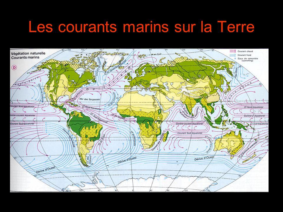 Les courants marins sur la Terre