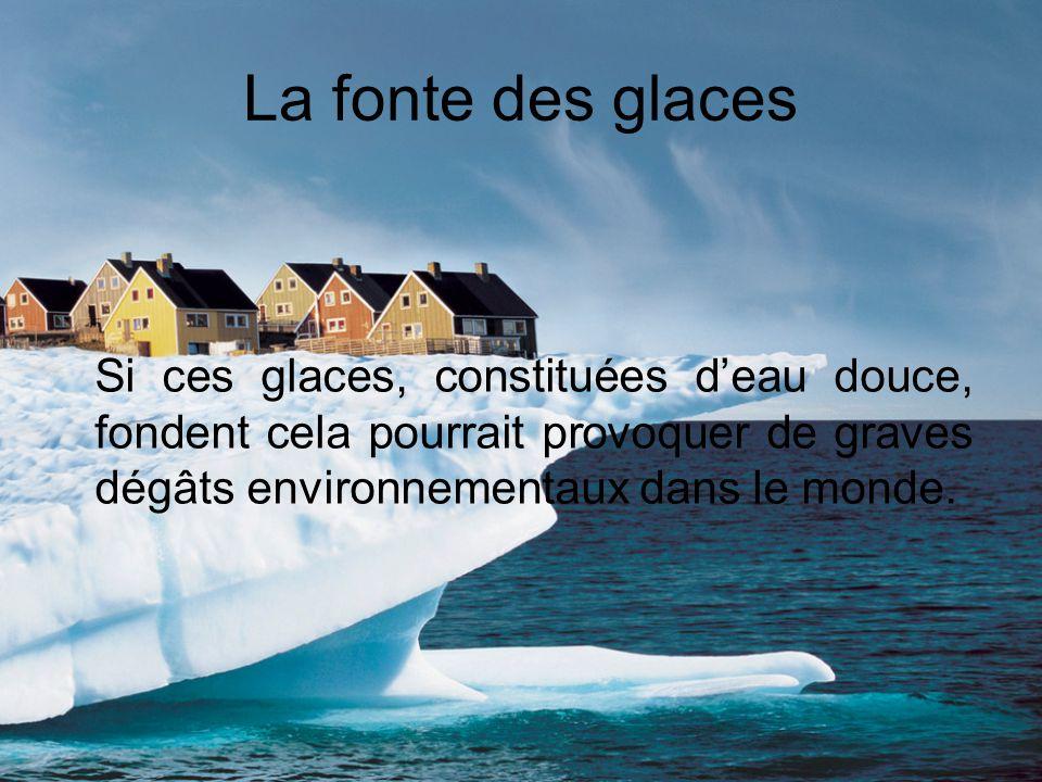 La fonte des glaces Si ces glaces, constituées d'eau douce, fondent cela pourrait provoquer de graves dégâts environnementaux dans le monde.