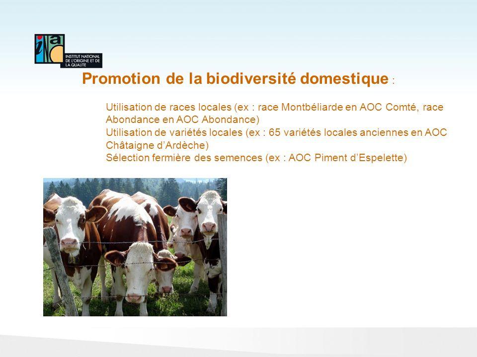 Promotion de la biodiversité domestique :