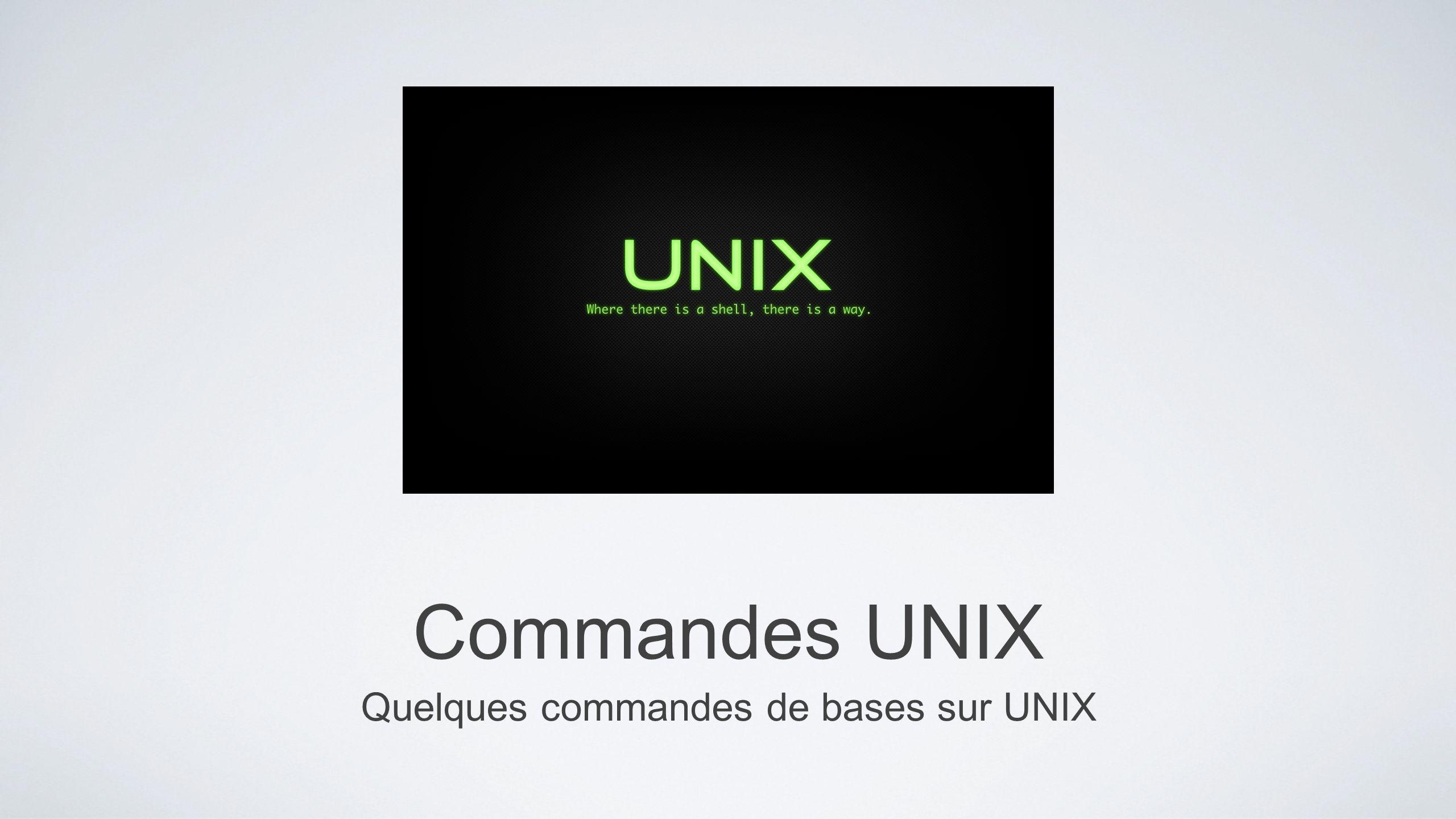 Quelques commandes de bases sur UNIX