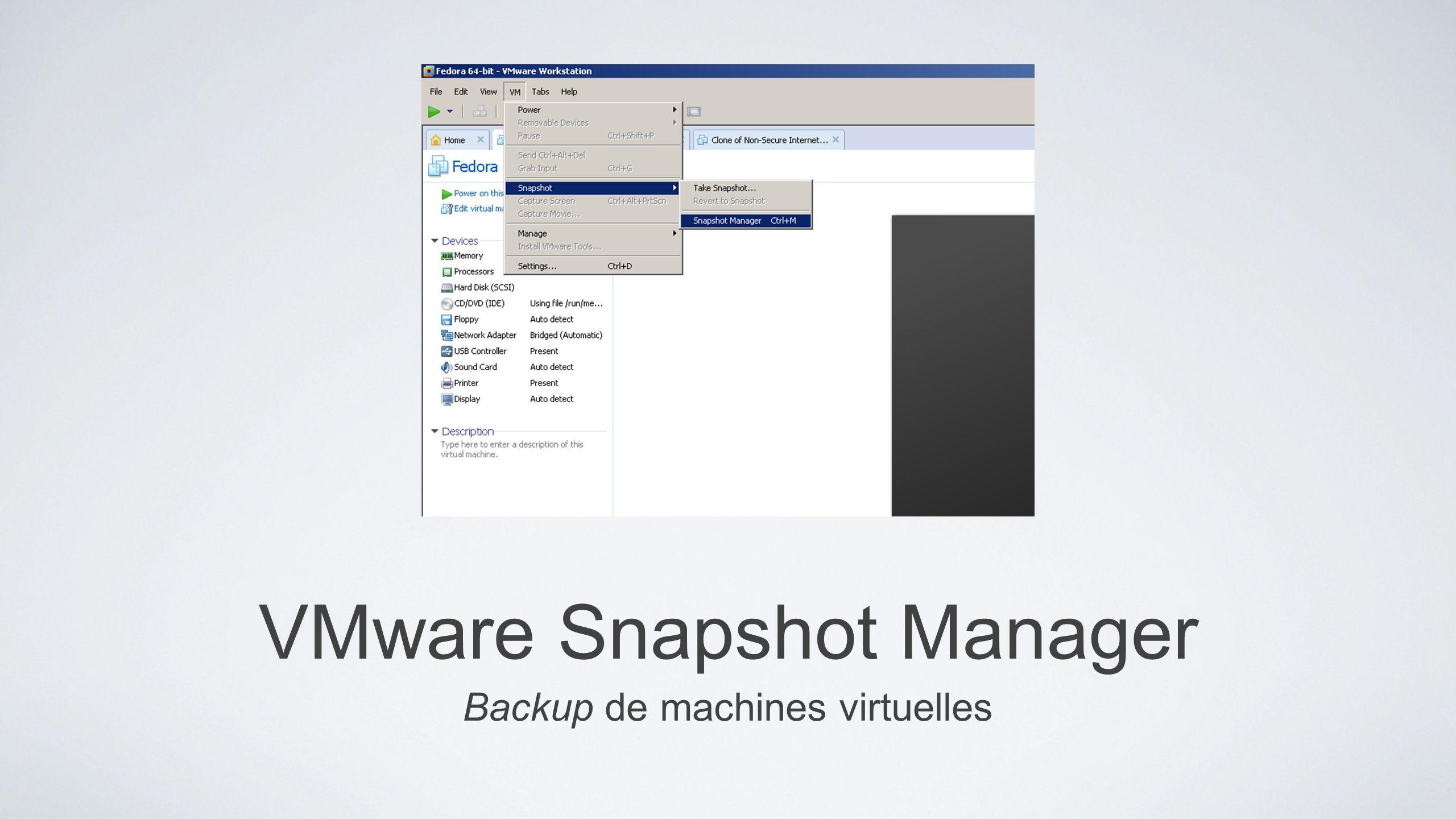 VMware Snapshot Manager