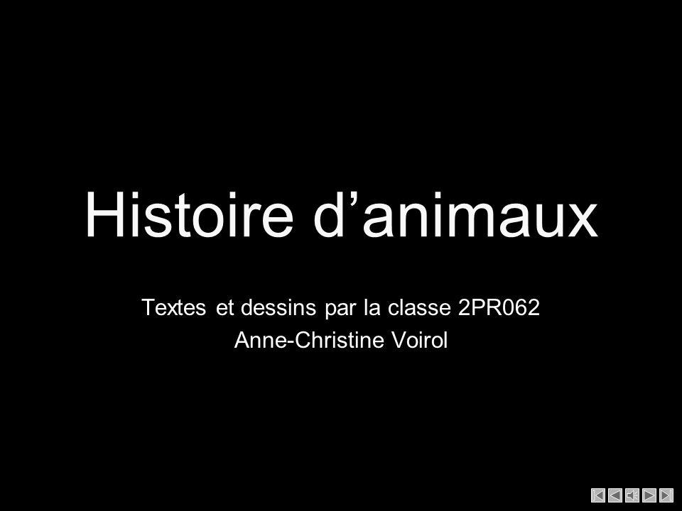 Textes et dessins par la classe 2PR062 Anne-Christine Voirol