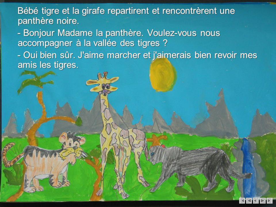 Bébé tigre et la girafe repartirent et rencontrèrent une panthère noire.