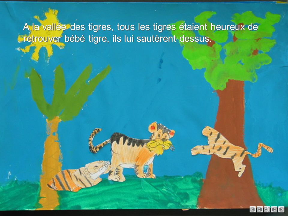 A la vallée des tigres, tous les tigres étaient heureux de retrouver bébé tigre, ils lui sautèrent dessus.