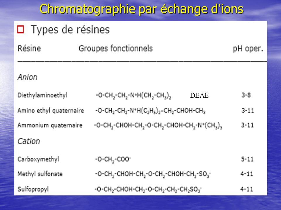 Chromatographie par échange d'ions
