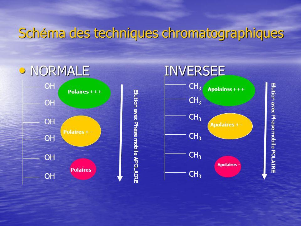 Schéma des techniques chromatographiques