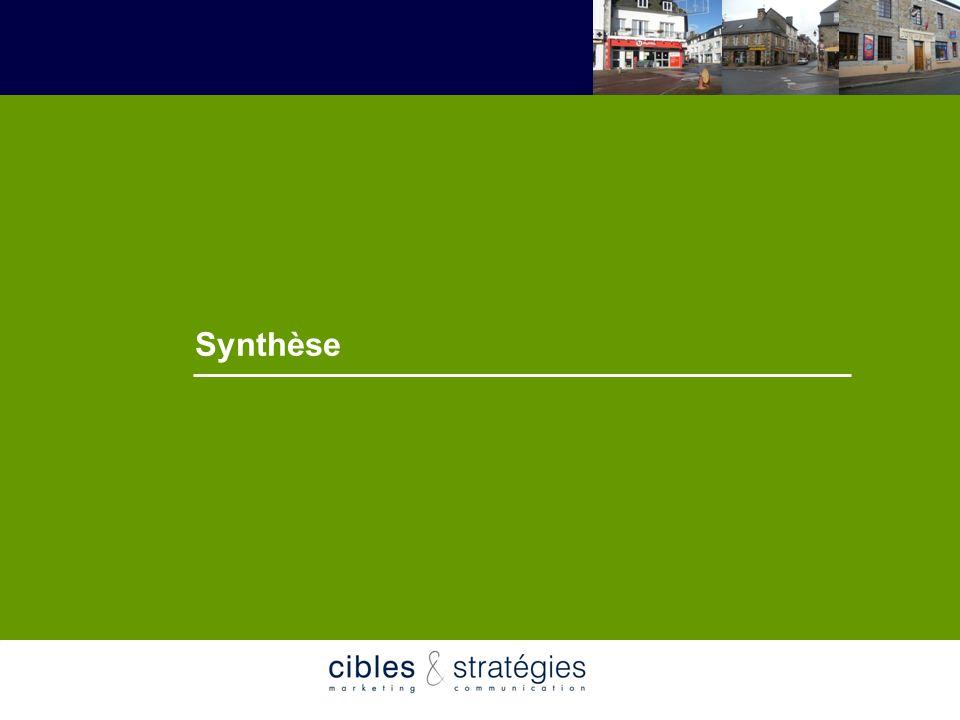 Synthèse Mai 2007 Schéma de développement commercial