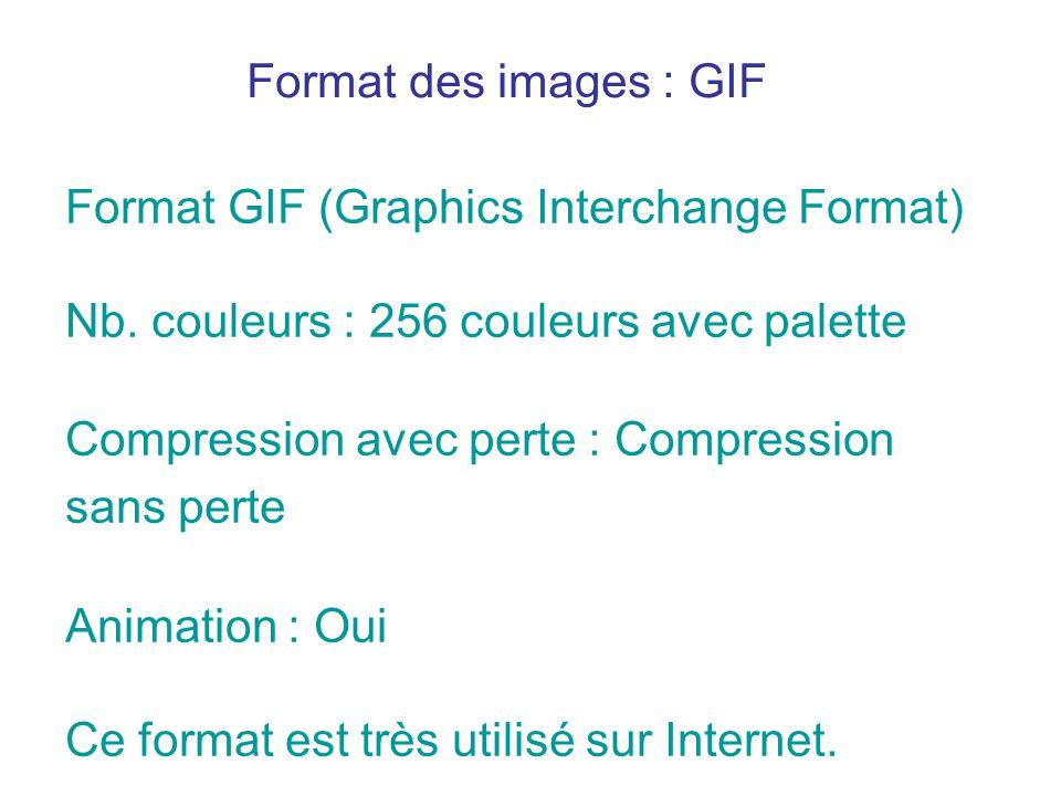 Format des images : GIF Format GIF (Graphics Interchange Format) Nb. couleurs : 256 couleurs avec palette.