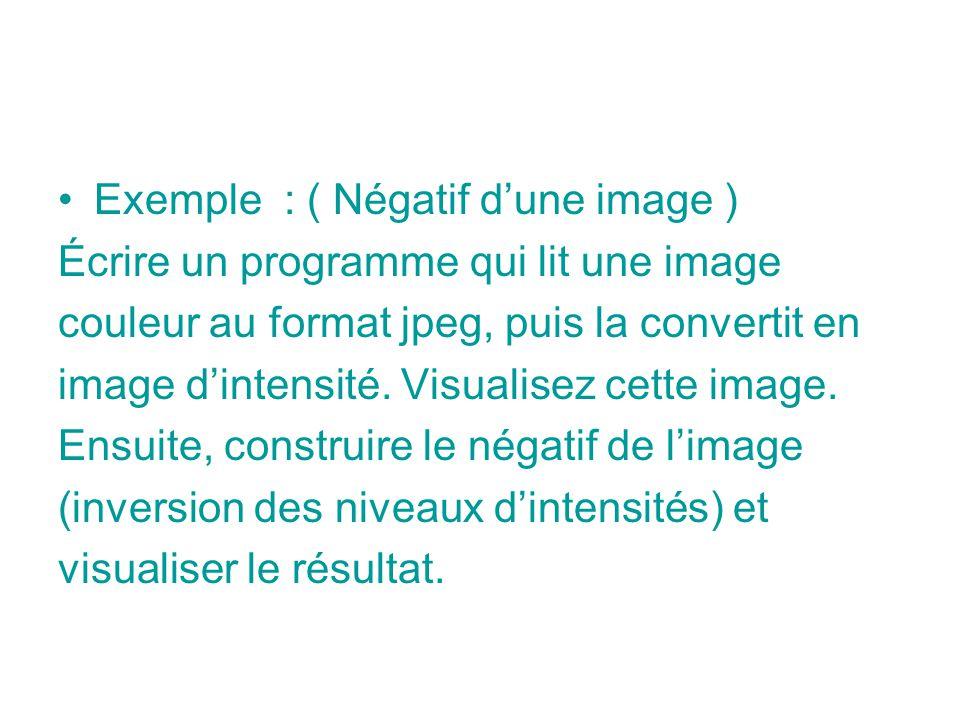 Exemple : ( Négatif d'une image )