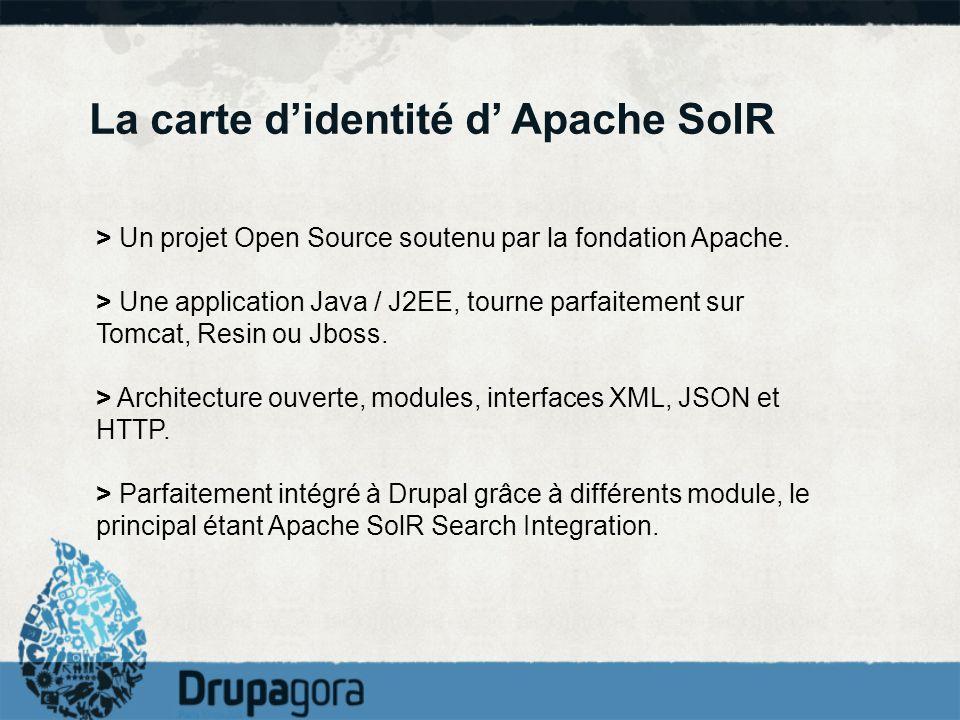 La carte d'identité d' Apache SolR