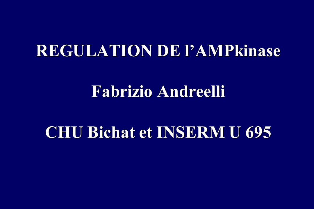 REGULATION DE l'AMPkinase Fabrizio Andreelli CHU Bichat et INSERM U 695