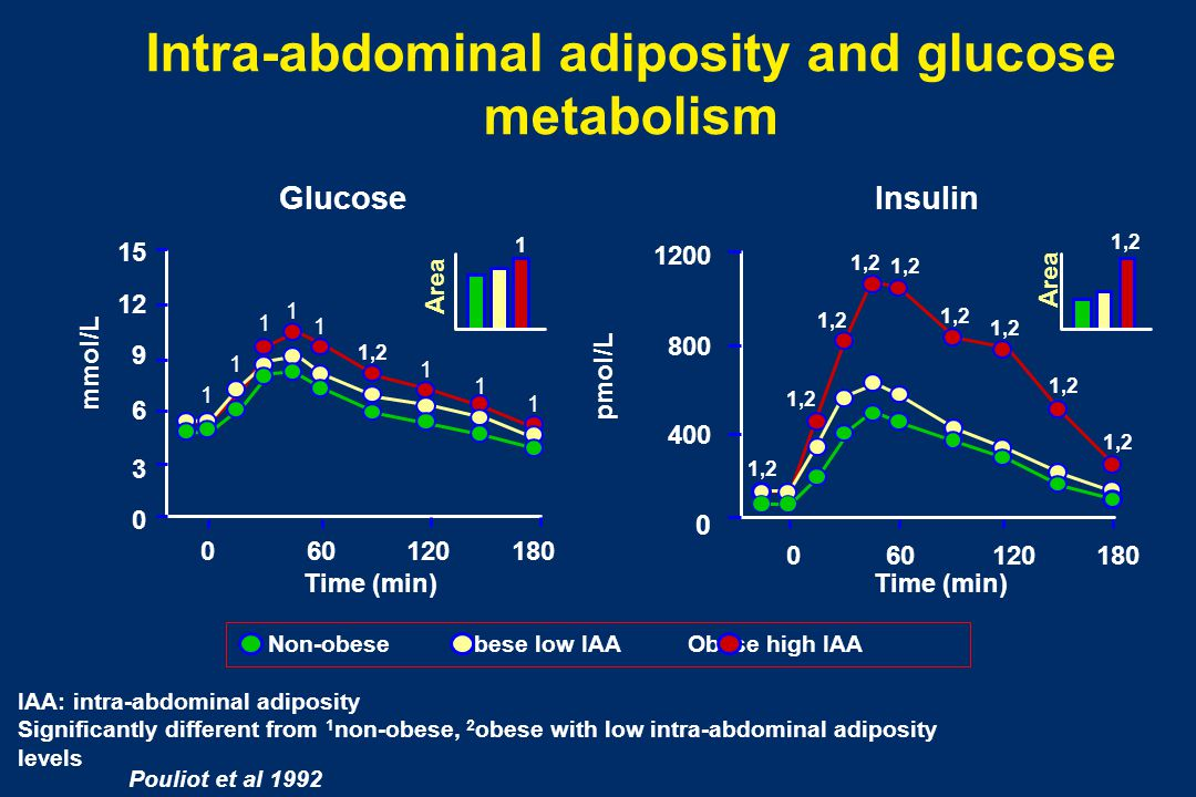 Intra-abdominal adiposity and glucose metabolism