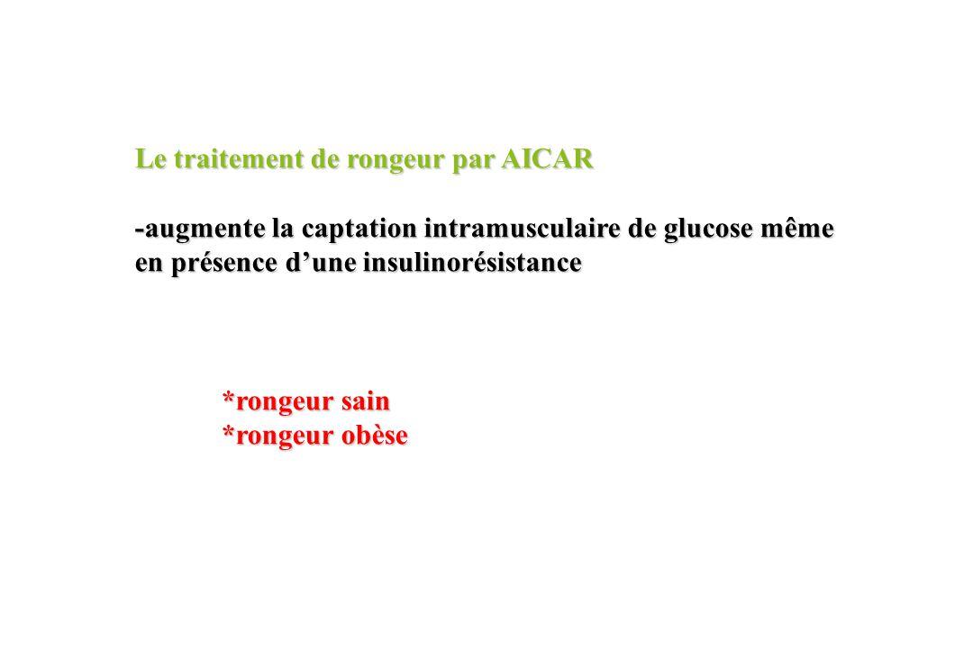 Le traitement de rongeur par AICAR