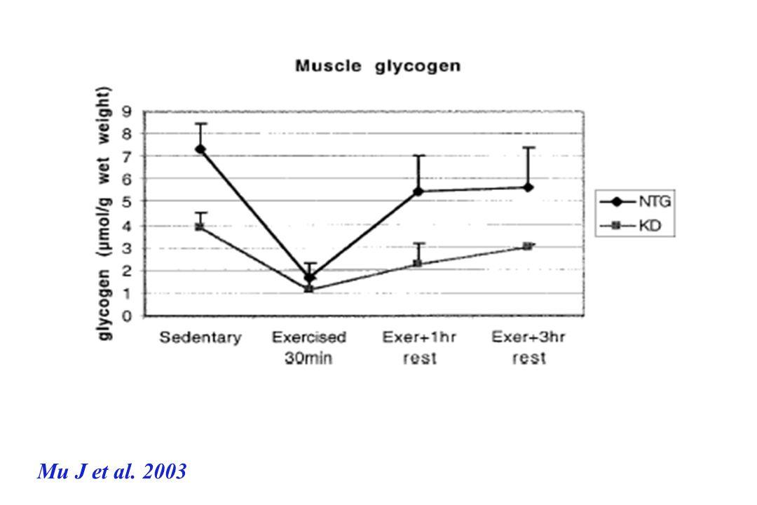 Mu J et al. 2003