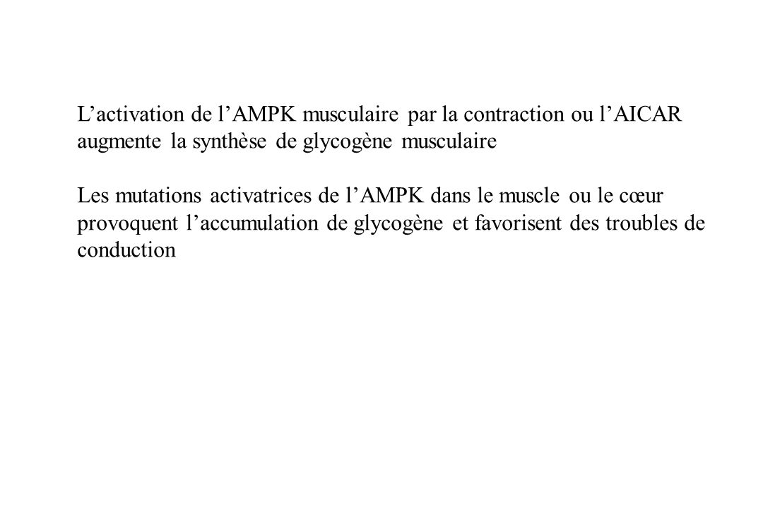 L'activation de l'AMPK musculaire par la contraction ou l'AICAR