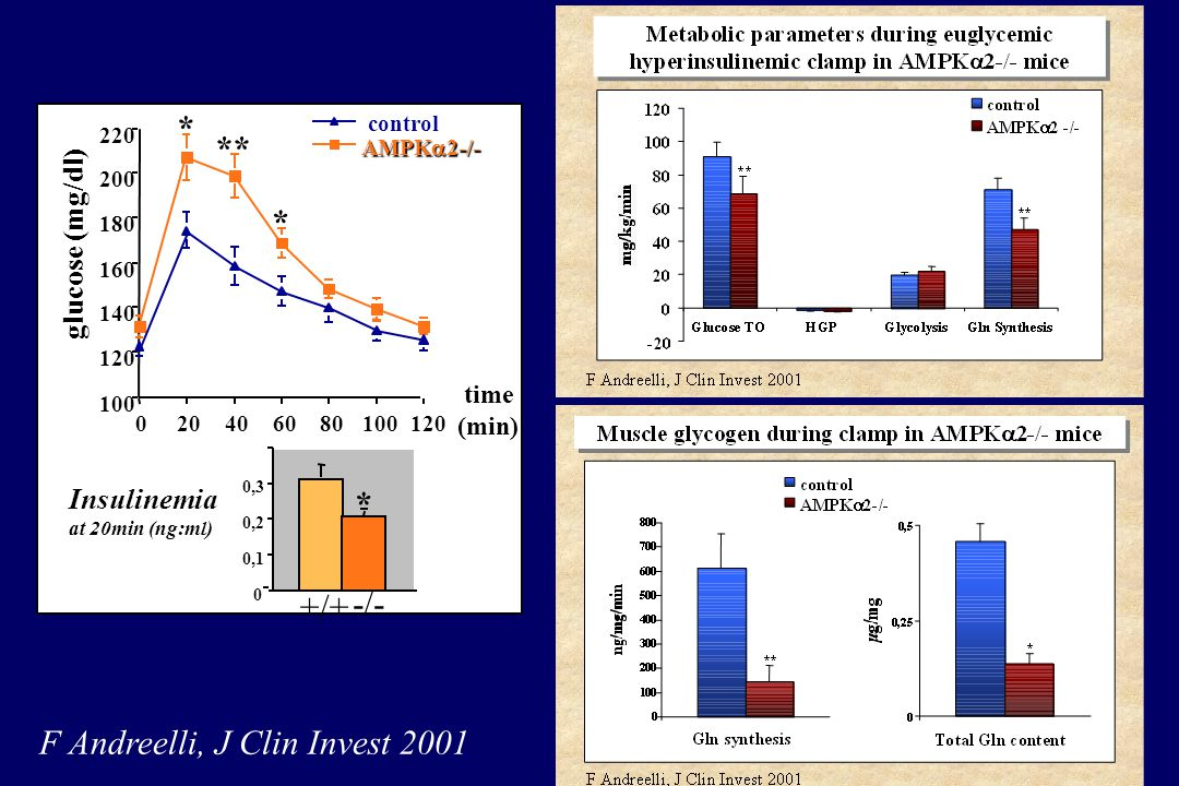 F Andreelli, J Clin Invest 2001