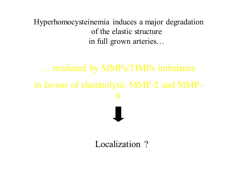 … mediated by MMPs/TIMPs imbalance