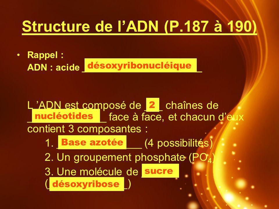 Structure de l'ADN (P.187 à 190)