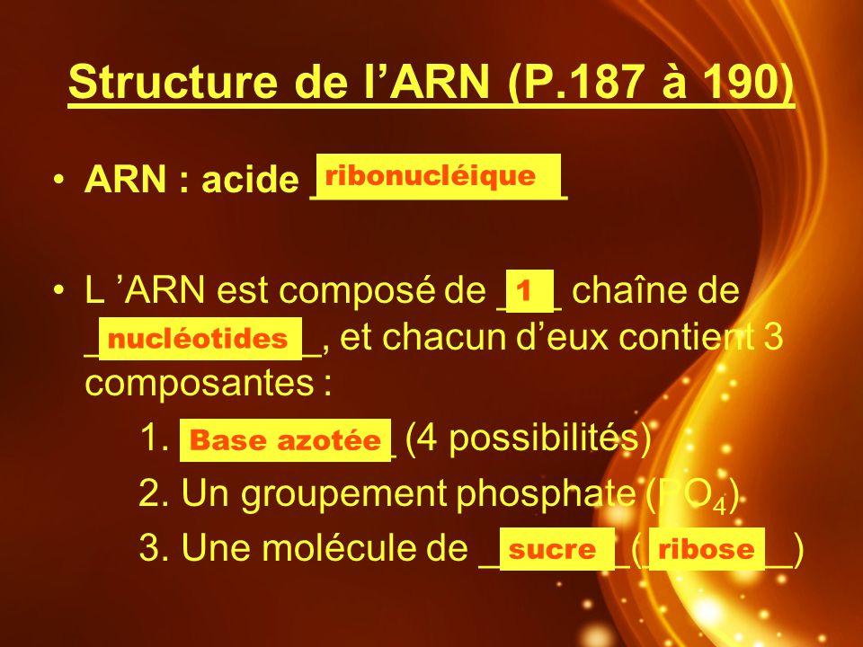 Structure de l'ARN (P.187 à 190)