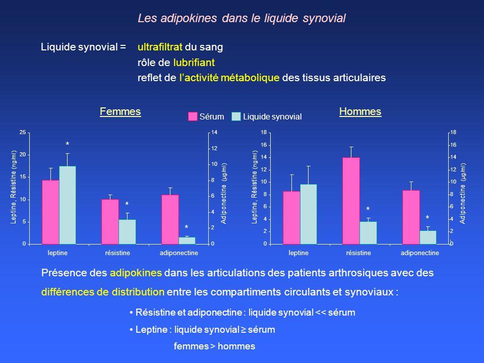 Les adipokines dans le liquide synovial