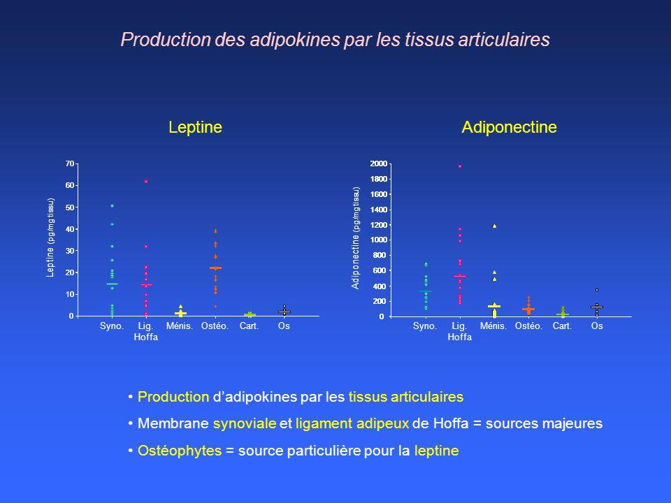Production des adipokines par les tissus articulaires