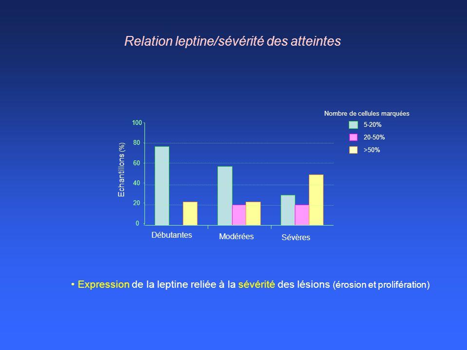 Relation leptine/sévérité des atteintes