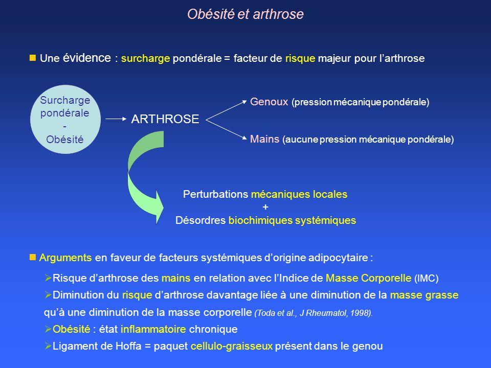 Obésité et arthrose ARTHROSE